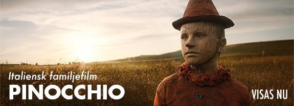 Pinocchio V